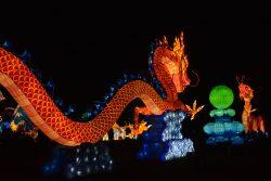 Les dragons Gaillac