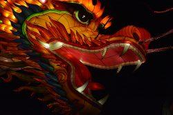 Gros plan de tête de dragon Gaillac