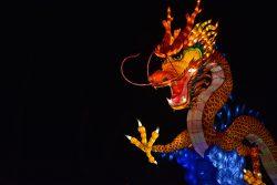 Dragon bondissant Gaillac