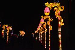 Allée de lanterneaux Gaillac